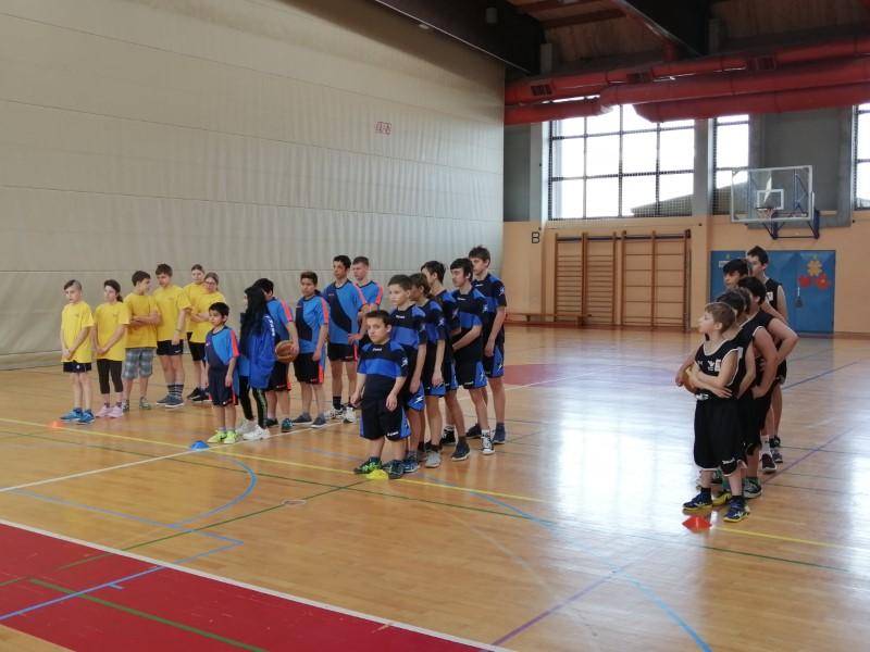 Področno tekmovanje košarki za OŠPP